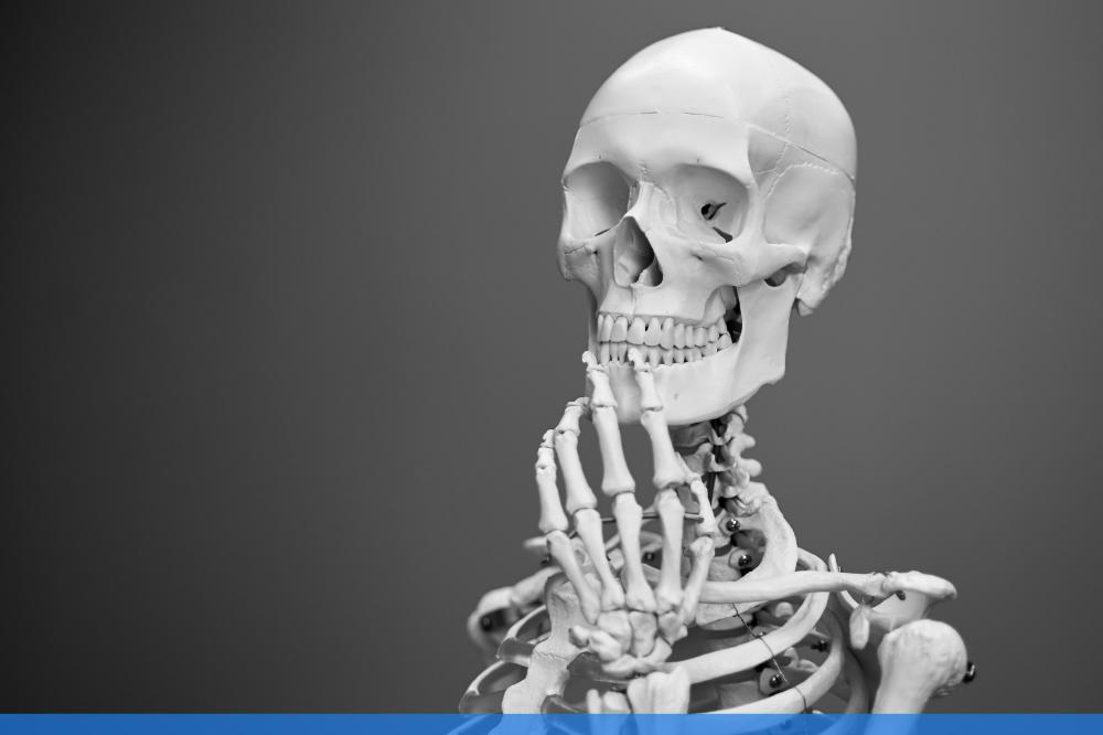 skeleton holding a pose